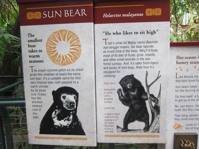 Sun Bear plaque