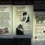 Macaque Plaque