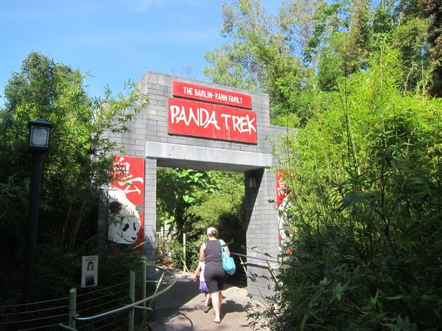 Panda exhibit area