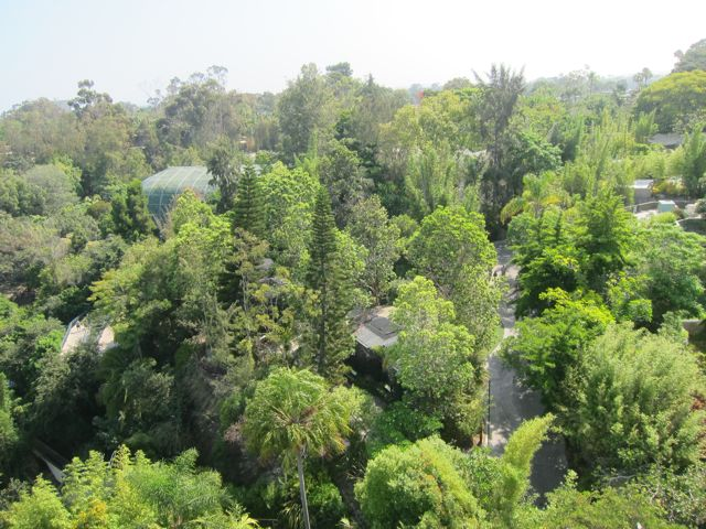 Skytram across the Zoo
